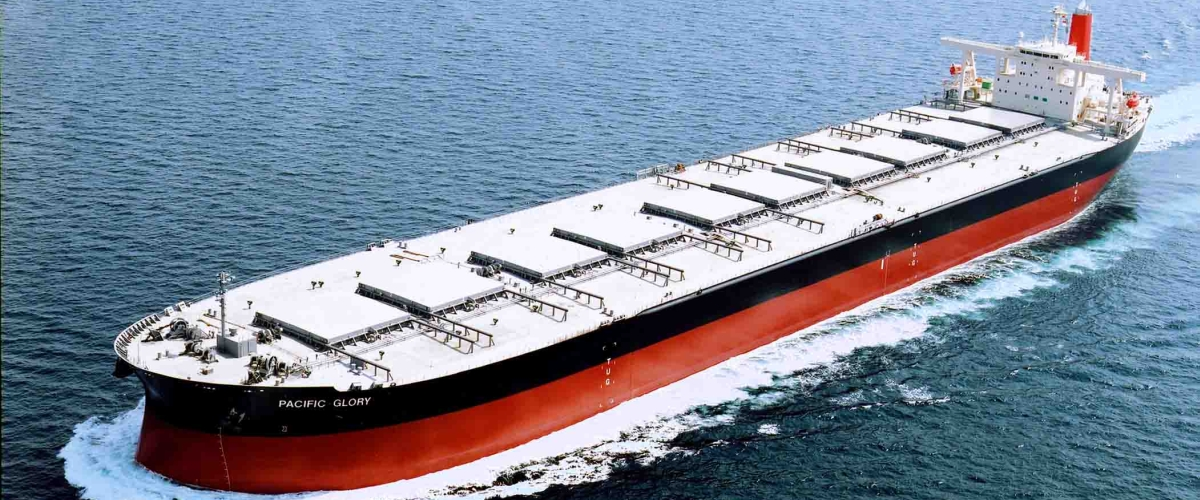Molmi | A Manning Arm of MOL in India